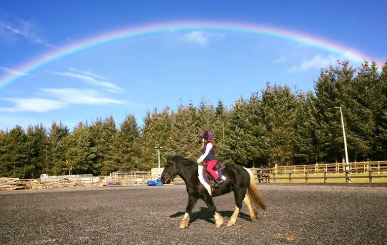 Equus scotland ride with us Summer holiday camp
